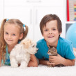 Stock Photo: Happy kids with their pets - a dog and a kitten