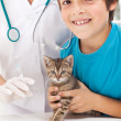 Boy getting his kitten to vaccination at veterinary — Stock Photo #11944506