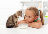 Me and my cat - little girl and her kitten — Stock Photo