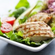 Chicken salad - Foto de Stock  