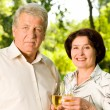 Senior couple celebrating with champagne, outdoors — Stock Photo #11477061