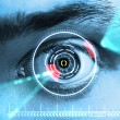 Retina Scan — Stock Photo