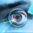 Retina Scan — Stock Photo #11152391