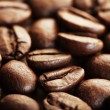 Brown coffee bean - Stock Photo