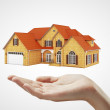 House and hand — Stock Photo #11708355