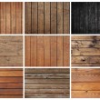 Collection wood — Stock Photo