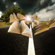 Books flying over the landscape of the road — Stock Photo