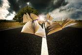 Böcker som flyger över landskapet i vägen — Stockfoto