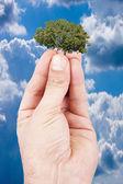 Concept of sustainable development, balance — Stock Photo
