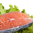 Fish, salmon — Stock Photo