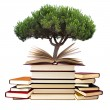 Stock Photo: Books with tree