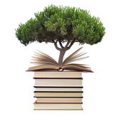 Books with tree — 图库照片
