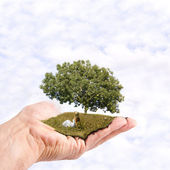 Environmental conservation — Stock Photo