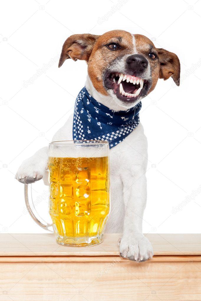 Собака пьяная рисунок