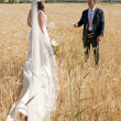 Stock Photo: Wedding couple in the field