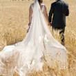 Wedding couple in the field — Stock Photo #11769762