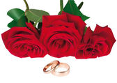 Illustration des roses et des anneaux — Vecteur