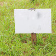 Stock Photo: Empty wood sign