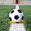 Soccer ball on grass — Stock Photo #12022066