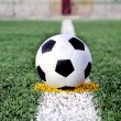 Stock Photo: Soccer ball on grass