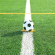 Soccer ball on grass — Stockfoto #12023112