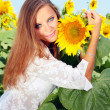 Royalty-Free Stock Photo: Happy woman in beauty field with sunflowers