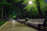 Benches on the pavement in the light — Stock Photo