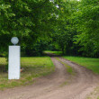 Forest dirt road and white pole — Stock Photo