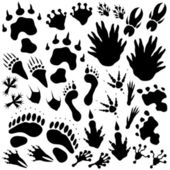 Alien monster footprints — Stock Vector