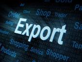 Palabra pixeled exportación en la pantalla digital — Foto de Stock
