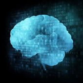Brain on digital screen — Stock Photo