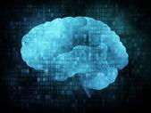 Brain on digital screen — Stock Photo