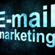 Stock Photo: Marketing concept: pixelated words Email marketing on digital sc