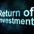 Stock Photo: Business concept: pixelated words Return of Investment ROI