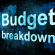 Stock Photo: Business concept: pixelated words Budget breakdown