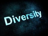 Business concept: pixelated words Diversity on digital screen — Foto de Stock