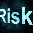 Stock Photo: Life style concept: pixelated words Risk on digital screen