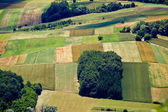 Green field layers aerial view — Stock Photo