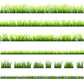 Collection de différents types d'herbe verte — Vecteur