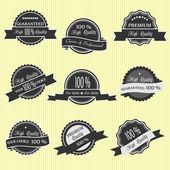Vector set of Premium Quality Labels — Stock Vector