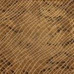 Vector snake skin texture — Stock Vector