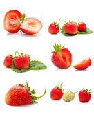The collage made from the delicious strawberries — Stock Photo