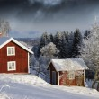 Red cottages and snowy winter — 图库照片