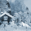Red cottages and snowy winter — Foto de Stock