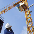 Stock Photo: Building worker and giant cranes