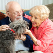 Seniors at Home with Their Dog - Stock Photo