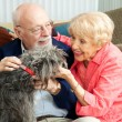 Seniors at Home with Their Dog - Foto Stock