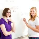 Algebra Class - Teen Girls — Stock Photo #11048417