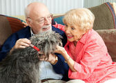Seniors at Home with Their Dog — Stok fotoğraf