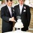 Gay Wedding - Grooms Cut Cake — Stock Photo